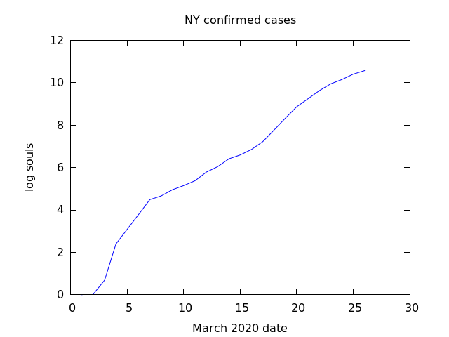 log graph of confirmed covid19 cases NY